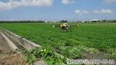 無人機加入農作列工作行*107.09 .10:DSC00004-2.jpg