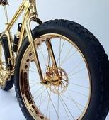 網路圖片:喜歡自行車,但不喜歡這輛!太晃眼了3.jpeg