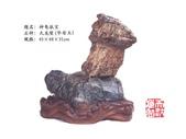 天然奇石欣賞:天然奇石欣賞 (6).jpg