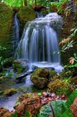 绵绵细水瀑布流:绵绵细水瀑布流 (6).jpg