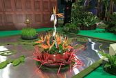 台北圓山花卉展102.11.30.:DPP_0016.JPG