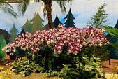 台北圓山花卉展102.11.30.:DPP_0013.JPG