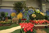 台北圓山花卉展102.11.30.:DPP_0030.JPG
