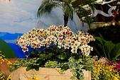 台北圓山花卉展102.11.30.:DPP_0024.JPG