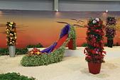 台北圓山花卉展102.11.30.:DPP_0027.JPG