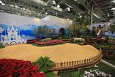 台北圓山花卉展102.11.30.:DPP_0003.JPG