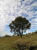 清境廬山1218'04:片雲朵朵與孤立的樹