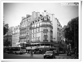 8 JUL 2012 dorr PARIS :IMGP2169.JPG