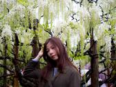20190430日本隨便拍:P4308160.jpg
