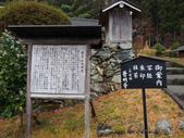 2016美山:P1180206.jpg