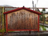 2016美山:P1180209.jpg
