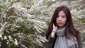 20190430日本隨便拍:P4298096.jpg