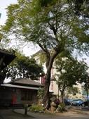 2013.02.28(雲林虎尾雲林故事館):20120228_304.jpg