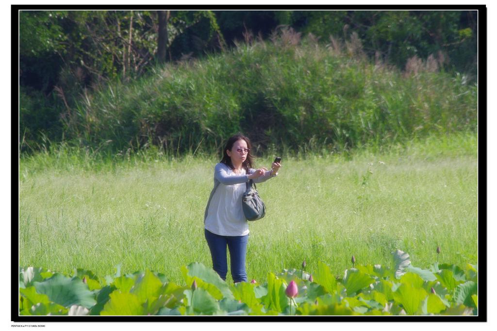 2011台大農改場:IMGP1100.jpg