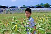 向陽農場:IMGP1522.jpg