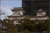 京阪神day8:DSC08235.JPG