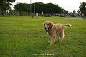 20150801-02 open醬_林默娘公園:DSC01990.JPG