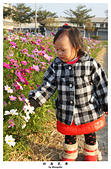 20140131 安安in社南花海: