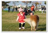 20130106小安&芒果在林默娘公園:DSC08333.JPG