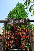 20150516 派樂特親子遊_淨園農場:DSC01589.JPG