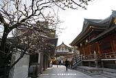 20150225 機場_湯島神社:DSC00343.JPG