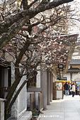20150225 機場_湯島神社:DSC00342.JPG