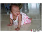 20120701林小安8m10d:DSC04430.JPG