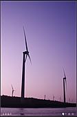 20110203高美濕地:DSC00154.JPG
