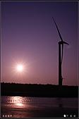 20110203高美濕地:DSC00161.JPG