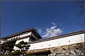 京阪神day8:DSC08187.JPG
