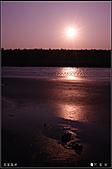 20110203高美濕地:DSC00174.JPG