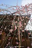 20150225 機場_湯島神社:DSC00354.JPG