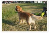 20130106小安&芒果在林默娘公園:DSC08349.JPG