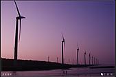 20110203高美濕地:DSC00176.JPG