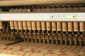YAMAHA平台鋼琴 C3:1720962300.jpg