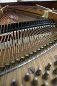 KAWAI平台鋼琴 KG-5C:1691159126.jpg