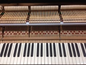 波士頓平台鋼琴GP-193:S__77529193.jpg