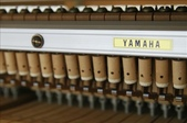 YAMAHA平台鋼琴 G2 R:1790989658.jpg