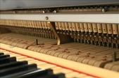 YAMAHA平台鋼琴 C3:1720962301.jpg