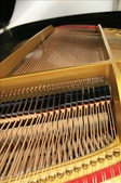 YAMAHA平台鋼琴 C3:1720962306.jpg