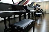 鋼琴諮詢展售中心(明倫門市):1583105664.jpg