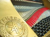YAMAHA平台鋼琴 G5 E:1135253390.jpg