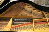 YAMAHA平台鋼琴 C3:1720962308.jpg