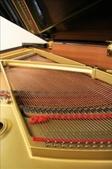 YAMAHA平台鋼琴 G2 F:1594323210.jpg