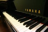 YAMAHA平台鋼琴 GH1:1733958167.jpg