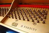 YAMAHA平台鋼琴 GH1:1733958168.jpg
