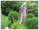 20130317_二叭子植物園:IMG_4898.JPG