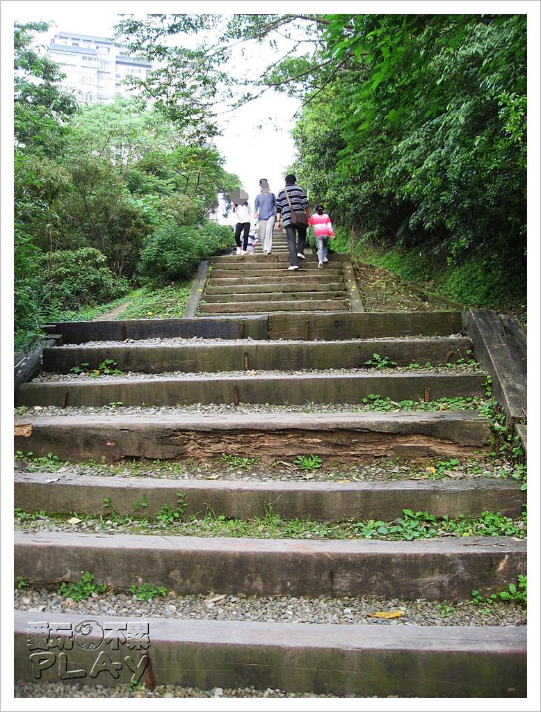 20130317_二叭子植物園:IMG_4938.JPG