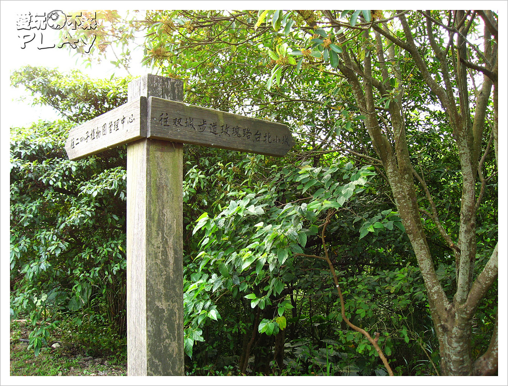 20130317_二叭子植物園:IMG_4946.JPG