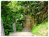 20130317_二叭子植物園:IMG_4947.JPG